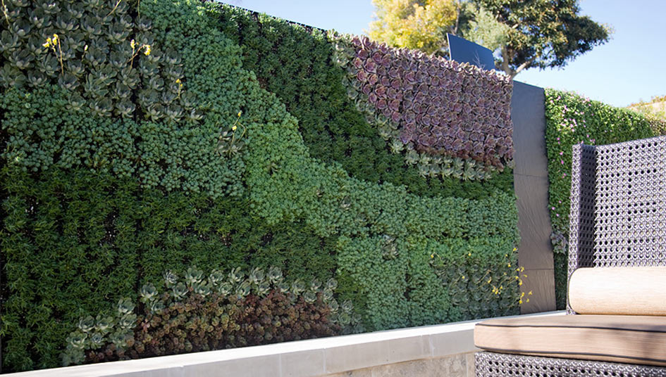 Urban Landscape - Living Walls